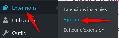 Cliquez sur Extensions puis ajouter
